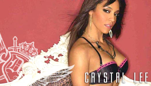 Dynasty Series Spotlight : Crystal Lee