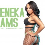 sheneka-adams-net-visualcocktail-22