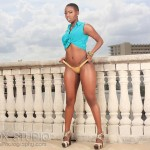 visha-iceboxstudio-dynastyseries-5