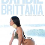barbie-brittania-window-robinv-dynastyseries-11