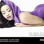treasure-iceboxstudio-dynastyseries-04
