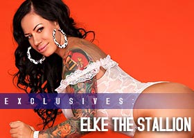 Elke the Stallion @ElketheStallion: More Pics of Enter The Stallion – Jose Guerra
