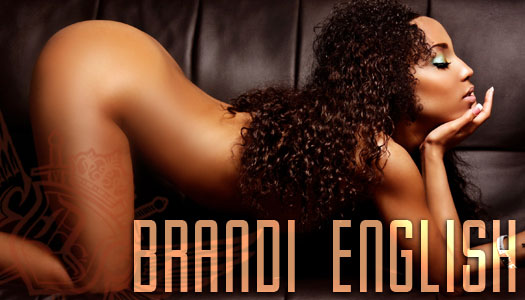 Dynasty Series Spotlight: Brandi English – courtesy of D. Brown