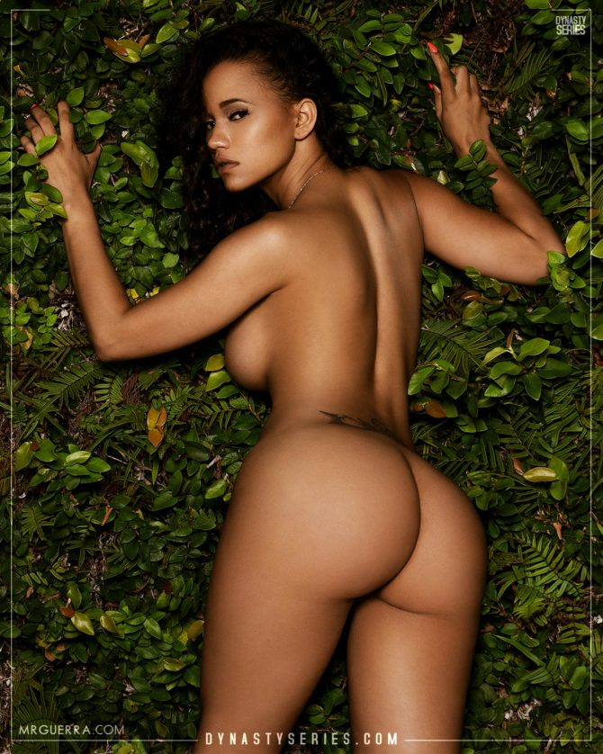 Red Rose: Much to be Desired – Jose Guerra
